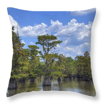 Largemouth Country Throw Pillow by Barry Jones
