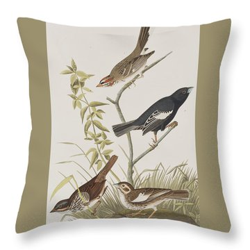 Lark Finch Prairie Finch Brown Song Sparrow Throw Pillow by John James Audubon