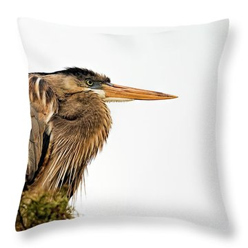 Laser Gaze Throw Pillow