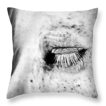 Lashes Throw Pillow by Darren Fisher