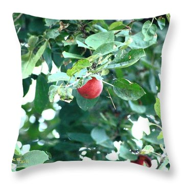 Last Apple Throw Pillow