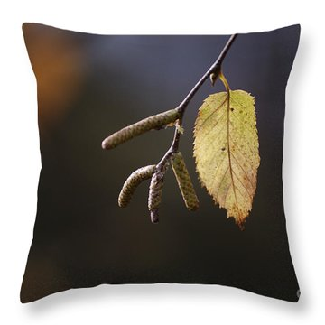 Last Call Of Fall Throw Pillow by Randy Bodkins