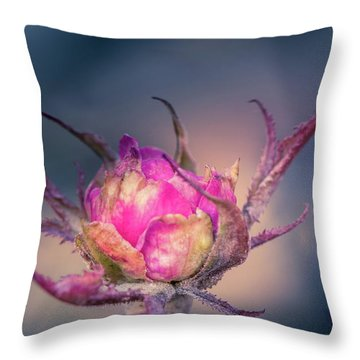 Last Color Of Summer Throw Pillow