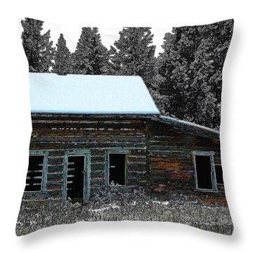 Throw Pillow featuring the digital art Last Days 1 by Stuart Turnbull
