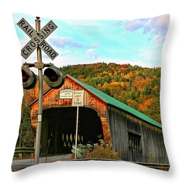 Throw Pillow featuring the photograph Last Days by DJ Florek