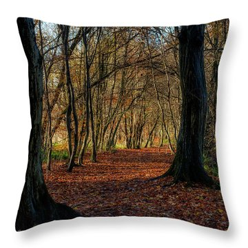 Throw Pillow featuring the photograph Last Days Of Autumn by Jeremy Lavender Photography