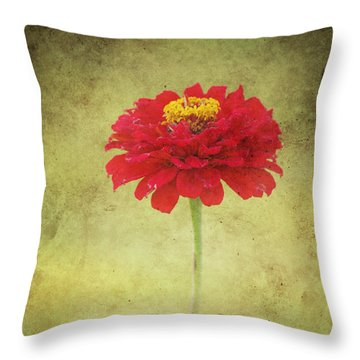 Last Days Of Summer Throw Pillow by Angela Doelling AD DESIGN Photo and PhotoArt