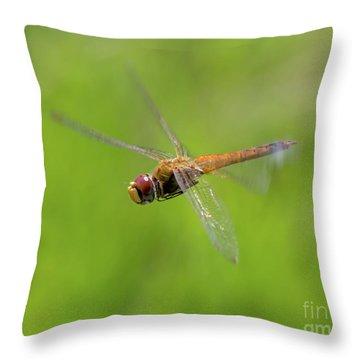 Last Flight Of Summer Throw Pillow