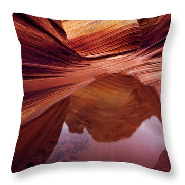Last Glance Throw Pillow