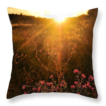 Throw Pillow featuring the photograph Last Glimpse Of Light by Jan Amiss Photography