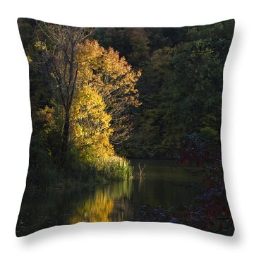 Throw Pillow featuring the photograph Last Light - D009910 by Daniel Dempster