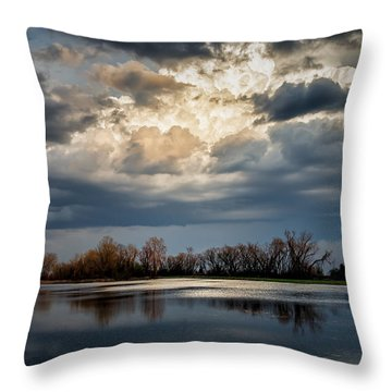 Last Light Throw Pillow by James Barber