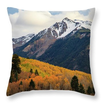 Throw Pillow featuring the photograph Last Light Of Autumn by David Chandler