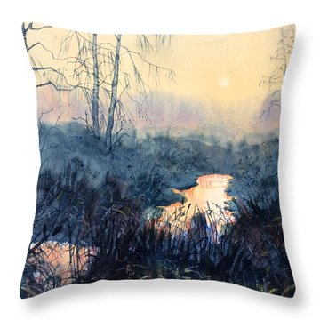 Last Light On Skipwith Marshes Throw Pillow