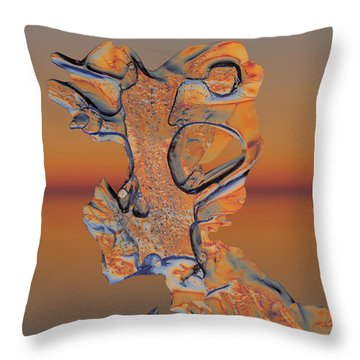 Throw Pillow featuring the photograph Last Look At Sunset by Sami Tiainen