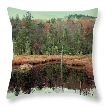 Throw Pillow featuring the photograph Last Of Autumn On Fly Pond by David Patterson