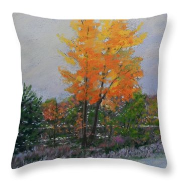 Last Of Fall First Of Winter Throw Pillow