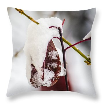 Last Of The Autumn Red Throw Pillow
