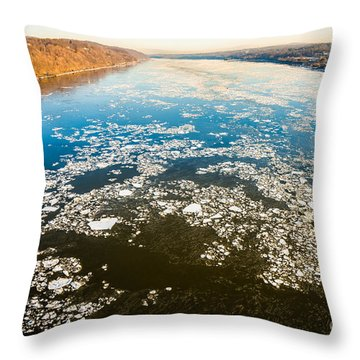 Last Of The Ice Floes Throw Pillow