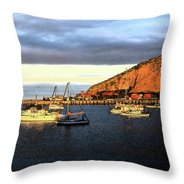 Throw Pillow featuring the photograph Last Rays At The Bay by Nareeta Martin