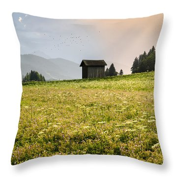 Throw Pillow featuring the photograph Last Rays On The Valley by Yuri Santin