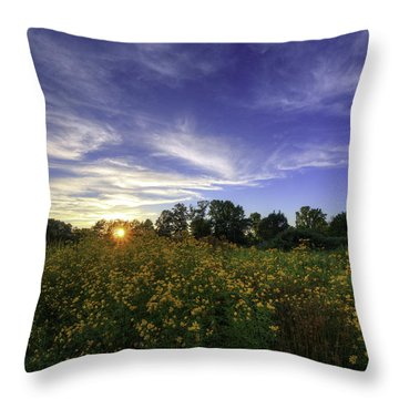 Last Rays Over The Flowers Throw Pillow