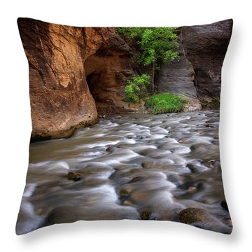 Throw Pillow featuring the photograph Last Stand by Dustin LeFevre