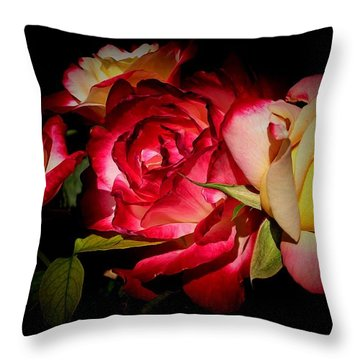Last Summer Roses Throw Pillow