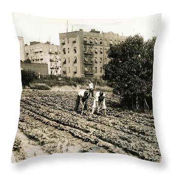 Last Working Farm In Manhattan Throw Pillow by Cole Thompson