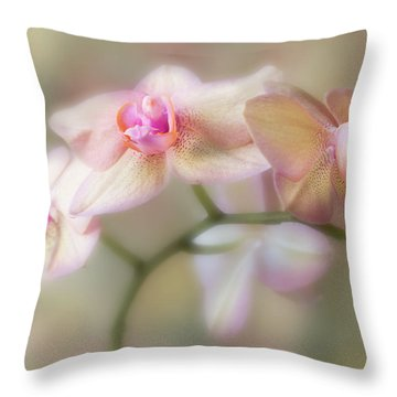 Lasting Forever. Throw Pillow