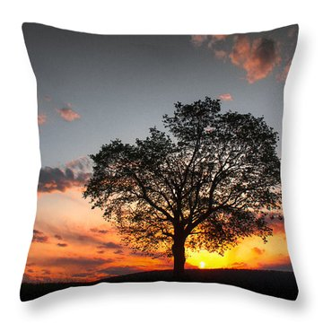 Throw Pillow featuring the photograph Lasting Hope by Everett Houser