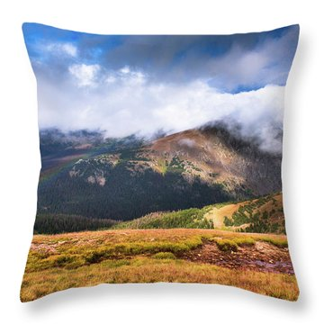 Lasting Wonders Throw Pillow