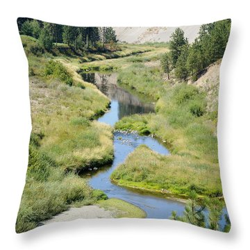 Throw Pillow featuring the photograph Latah Creek by Ben Upham III