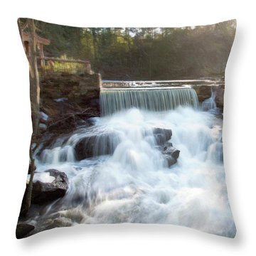 Throw Pillow featuring the photograph Late Afternoon At The Duck Pond by Sue Collura