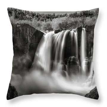 Late Afternoon At The High Falls Throw Pillow