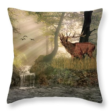 Late Afternoon Call Throw Pillow