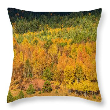 Late Afternoon Gold Throw Pillow