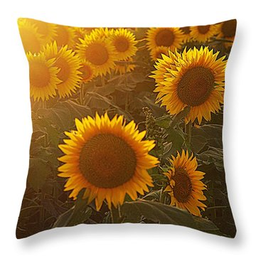 Late Afternoon Golden Glow Throw Pillow