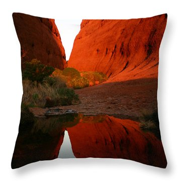 Late Afternoon Light And Reflections At Kata Tjuta In The Northern Territory Throw Pillow