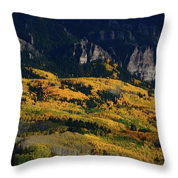 Late Afternoon Light On Aspen Groves At Silver Jack Colorado Throw Pillow by Jetson Nguyen
