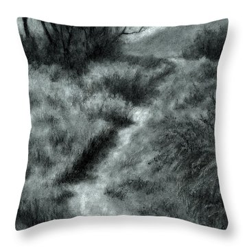 Late Afternoon Walk Throw Pillow