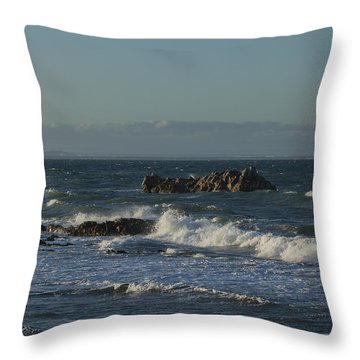 Late Afternoon Waves Throw Pillow