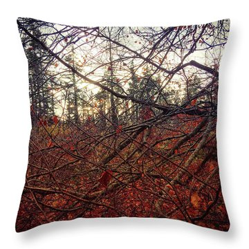 Late Autumn Morning Throw Pillow