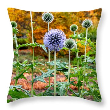 Late Bloom Among Fall Colors Throw Pillow