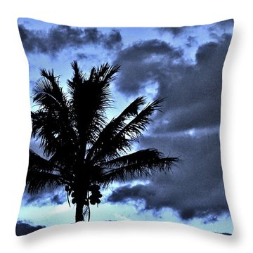 Late Day Palm Throw Pillow