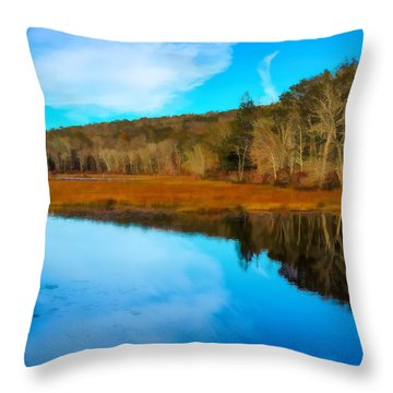 Late Fall At A Connecticut Marsh. Throw Pillow