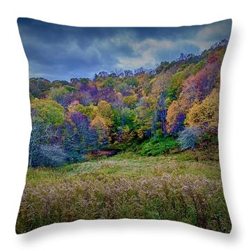 Late Fall On Green Knob Trail Throw Pillow