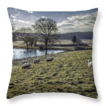 Late Fall Pastoral Throw Pillow