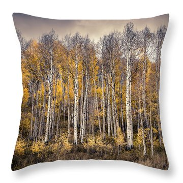 Throw Pillow featuring the photograph Late Fall by The Forests Edge Photography - Diane Sandoval