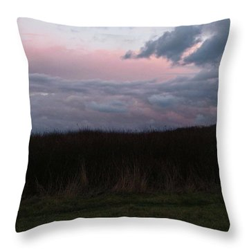 Late Light Throw Pillow by Laurie Stewart